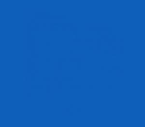 wp-hawk-logo-#0e5fb9